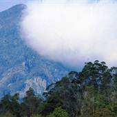 Wollumbin Mount Warning